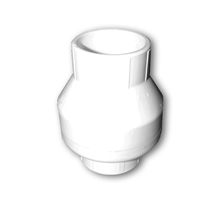Picture of Spring Check Valve 2in